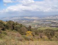71 اعتداء على أراضي سلطة وادي الأردن