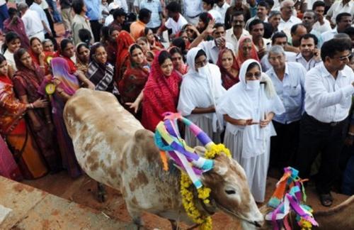 هكذا عاقب هندوس في الهند مسلميْن لتهريبهما لحوم البقر