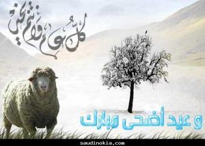 الافتاء: عيد الاضحى في الاول من ايلول