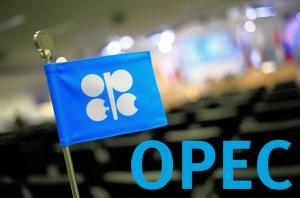 أوبك: الطلب على النفط سينخفض في 2018