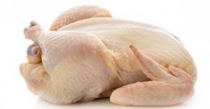 انخفاض تدريجي على أسعار الدجاج