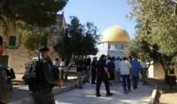 الاحتلال يعتقل أحد حراس المسجد الأقصى